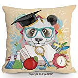 AngelDOU Back Cushion Nice Throw Pillow 13.7x13.7 Inch Panda Goes to School Humor Education Hipster with Glasses Books Pen Graphic Art Sofa Bed Head Waist Pillow Back car Waist pad.M