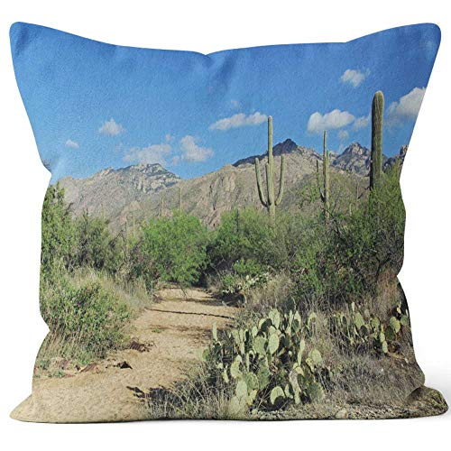 Nine City Hiking Trail in Bear Canyon in Tucson Home Decorative Throw Pillow Cover,HD Printing Square Pillow case,36