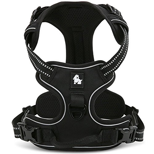 fiE FIT INTO EVERYWAY No Pull Dog Harness Outdoor Adventure 3M Reflective...