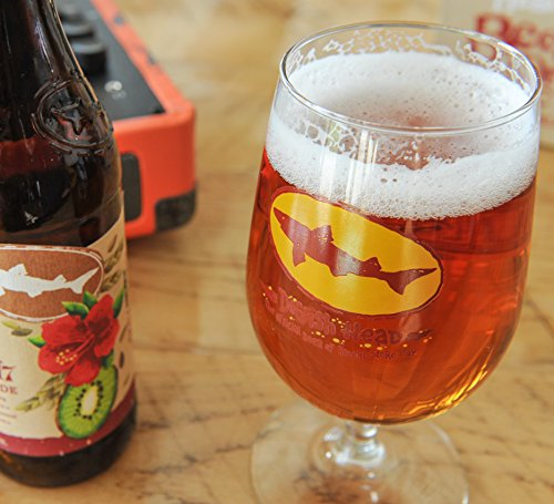Dogfish Head Craft Brewed Ales - Special Edition Record Store Day Stem Glass