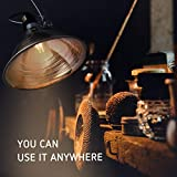 VIVOSUN Clamp Lamp Light with Detachable 8.5 Inch