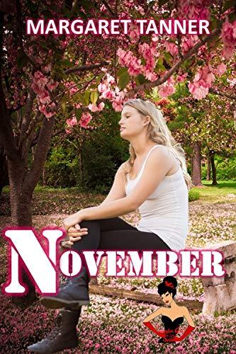 November (Calendar Gals Series Book 11)