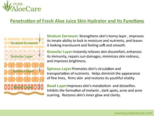 PURE AloeCare Men's Organic Aloe Hydrating Skin Toner, Instantly Delivers and Locks in Moisture, Reduces and Prevents Signs of Fine Lines 5.24 oz (155ml)