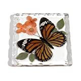 butterfly in resin - REALBUG Resin Coaster with Common Tiger Butterfly