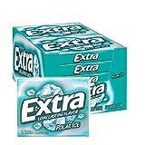 EXTRA Polar Ice Sugarfree Gum, 15 Sticks (Pack of 10)