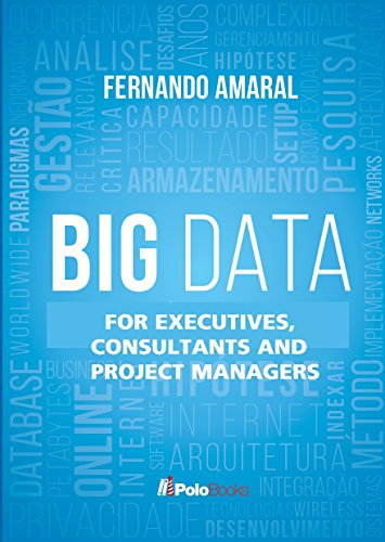 Big Data for executives, consultants and Project Managers (English Edition)