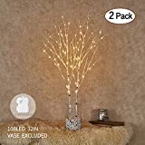 lighted tree branches Hairui Twig Birch Branch with Fairy LED Lights 32in 100LED Battery Operated Lighted White Willow Branch for Home Party Decoration Indoor Outdoor Use 2 Pack (Vase Excluded)