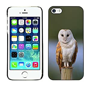 Ziland / Slim Design Case Cover Shel / Snow Perched Feathers White / Apple iphone 4 4s