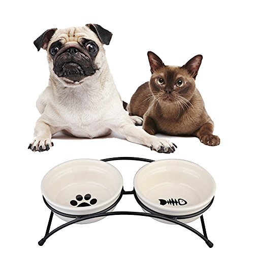 - Ymachray Pet Feeder Double Ceramic Bowl for Small Dogs and Cats
