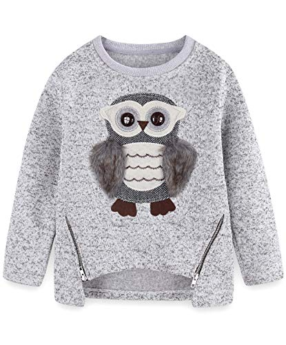4017b589bc51f Amazon.com  Cute Owl Sweater for Teen Girls Kids Little Big Girls Pullover   Clothing