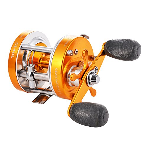 Isafish Baitcasting Reels Conventional Inshore and Offshore Saltwater and Freshwater Fishing Reels Baitcaster Golden Color ()