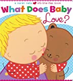 What Does Baby Love? (Karen Katz Lift-the-Flap Books)