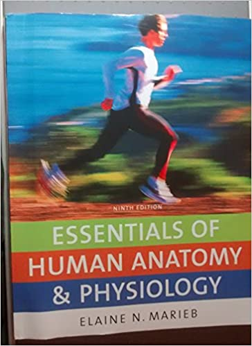 Essentials Of Human Anatomy Physiology 9th Edition By Elaine N Marieb