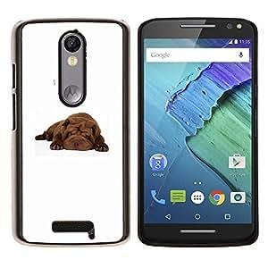 YiPhone /// Prima de resorte delgada de la cubierta del caso de Shell Armor - Shar Pei dormir del perro de perrito de Brown - Motorola Moto X3 3rd Generation