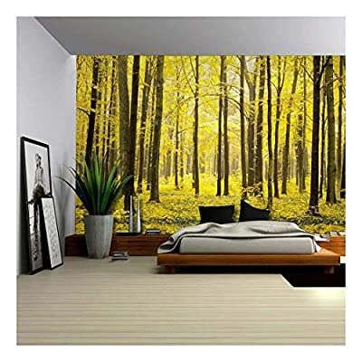Incredible Portrait, Top Quality Design, The Depths of an Autumn Forest Wall Mural