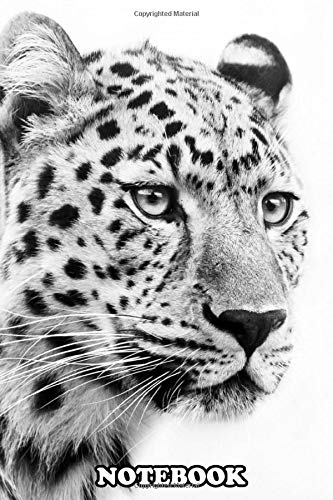 Notebook Jaguar Face Black And White Poster Wallpaper Wallart Ar Journal For Writing College Ruled Size 6 X 9 110 Pages Notebook Jaguarymu Notebook Jaguarymu 9781678537357 Amazon Com Books