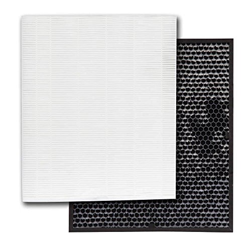 Genuine Electrolux EL043 HEPA and High Deodorization Anti-Odor Carbon Air Cleaner Filters for ELAP40D8PW, 1 HEPA and 1 Carbon Filters