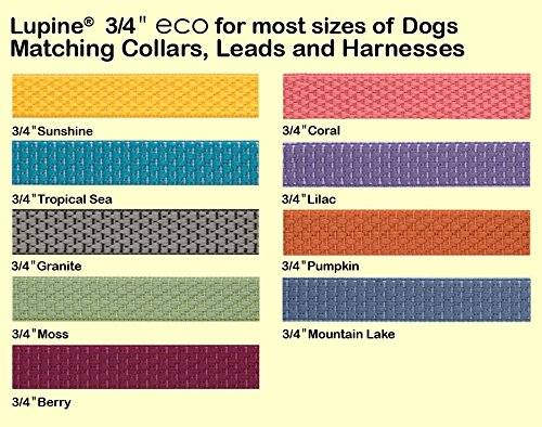 LupinePet Eco 3/4'' Sunshine 20-30'' Step In Harness for Medium Dogs by LupinePet (Image #3)