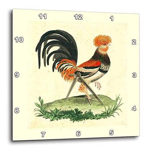 3dRose dpp_62339_2 1770 French Vintage Rooster Print Wall Clock, 13 by 13