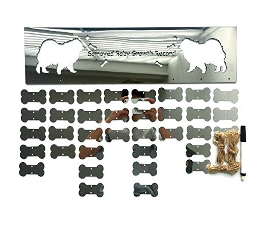 (Pet growth diary board Samoyed decorative wall stickers background dog ornaments (Silver))