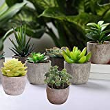 HEBE 4 Pack Artificial Potted Succulents Plants