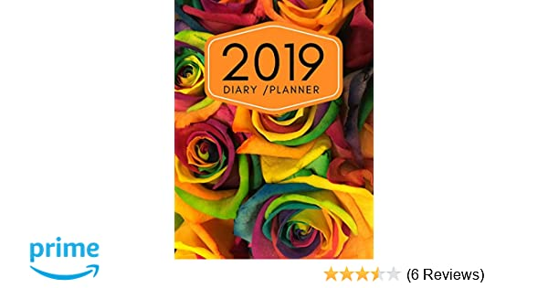 2019 Diary Planner: Page A Day (365 Pages) Daily Diary ...