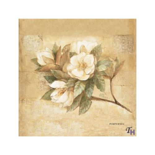 - Pimpernel Sugar Magnolia Coasters Set of 6