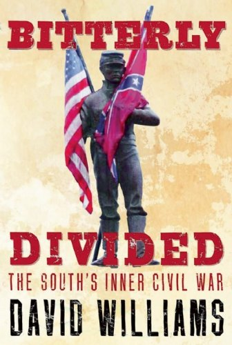 Download Bitterly Divided: The South's Inner Civil War pdf