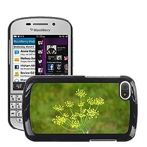 Print Motif Coque de protection Case Cover // M00290832 La flor de hinojo inflorescencia // BlackBerry Q10