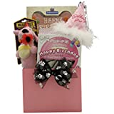 GreatArrivals Gift Baskets 1 Piece Happy Birthday Darling Girl! Pet Dog Birthday Gift Basket, 2 lb