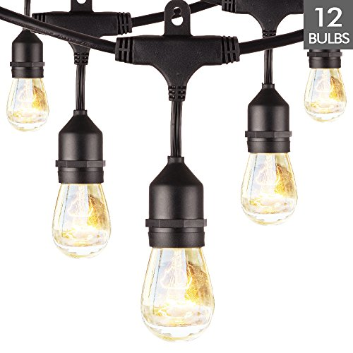 Outdoor String Lights with Hanging Bubs, 24ft Patio String Lights with 12 Incandescent Bulbs, Waterproof String Light for Backyard Bistro Tents Market Cafe Porch Holiday Party Decoration(Black)