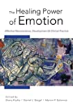 The Healing Power of Emotion: Affective Neuroscience, Development & Clinical Practice (Norton Series on Interpersonal Neurobiology (Hardcover))