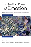 img - for The Healing Power of Emotion: Affective Neuroscience, Development & Clinical Practice (Norton Series on Interpersonal Neurobiology (Hardcover)) book / textbook / text book