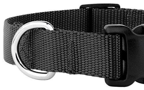 Country Brook Petz - 25+ Vibrant Colors - American Made Deluxe Nylon Dog Collar with Buckle (Extra Large, 1 Inch Wide, Black)