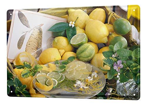 Plaques Nostalgic Fun Decoration Lemon Lime Metal Wall Plate