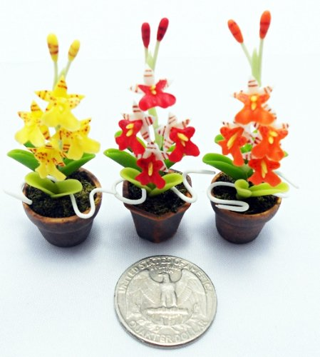 Dollhouse Flower Miniature Oncidium Orchids in Pots Set Made of Artificial Clay Realistic it Very Cute. (3 Pots) by Thai by Thai