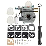 Hilom Carburetor for WT-973 MTD 753-06190 MTD Craftsman Bolens Murray Cub Cadet String Trimmer Weed Wacker Troybilt TB21EC TB22EC TB32EC TB42BC TB80EC Yard Man Y2500 Y2550EC Trimmer