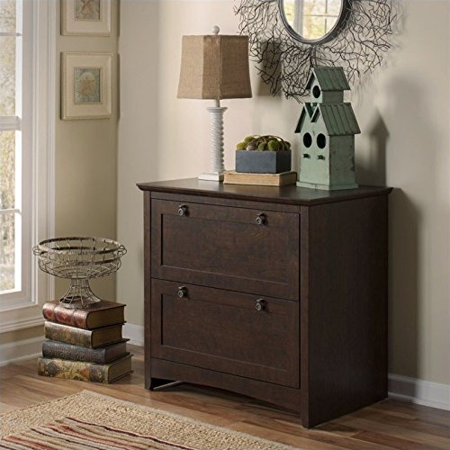 Scranton & Co 2 Drawer Lateral File Cabinet in Madison Cherry