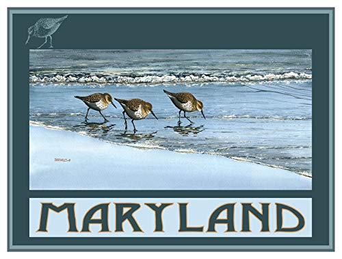 Maryland Breakfast at Beach Giclee Art Print Poster by Dave Bartholet (9
