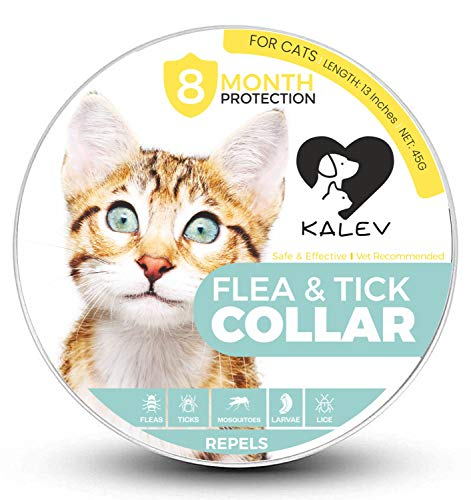 Kalev Flea And Tick Collar For Cats - Vet Recommended Hypoallergenic Waterproof Natural 8 Month Protection & Prevention From Fleas Ticks Mosquitos Larvae Lice Treatment (13 Inches) by Kalev