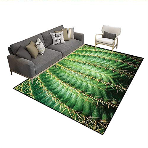 """Price comparison product image Carpet, Photo of Cactus with Spikes Plant Flower Fruit from Close Zoom Shoot with Spikes Print, Print Area Rug, Green 6'6""""x9'"""