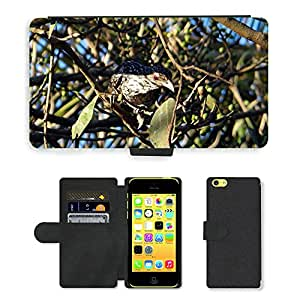 PU LEATHER case coque housse smartphone Flip bag Cover protection // M00130780 Asia Koel Eudynamys scolopaceus // Apple iPhone 5C