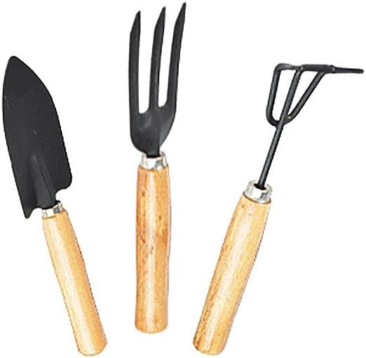 kingt 3 piezas/Set Herramientas de jardín para niños, Juguete para verduras Patch/Césped y otras actividades en exteriores, Mini Juego de herramientas de jardín Kleine Pala Rastrillo Pala para plantas crasas: Amazon.es: Jardín
