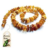 "Baby's Baltic Amber Teething Necklace 12"" (Naturally Gentle Relief for Baby Teething Symptoms, Natural Analgesic, Immune Boosting Anti-Inflammatory, Chakra Cleansing, Raw, Unpolished, Untreated, Pure & Real Direct From the Baltic Sea)"