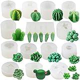 Funshowcase Cactus and Succulent Plant Silicone