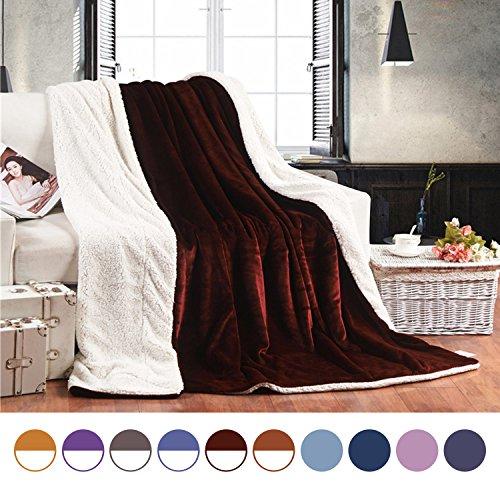 Euyzou Throw Blanket Micro Fleece Plush Sherpa Fur Soft Comforter Heavy Weighted Couch Sofa Bed 60x80 Queen Size (Blanket Comforter Throw)