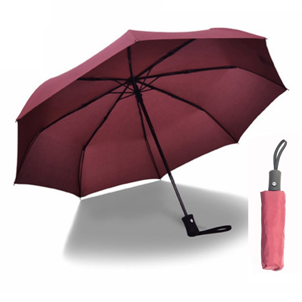 ANSLYQA Travel Umbrella Windproof Waterproof Lightweight Compact Umbrellas with 8 Ribs Auto Open Close for Men Women and Kids