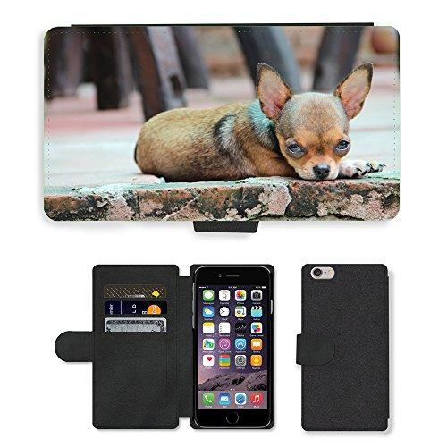 "Just Phone Cases PU Leather Flip Custodia Protettiva Case Cover per // M00129238 Puppy Dog Pet Race Chihuahua // Apple iPhone 6 PLUS 5.5"""