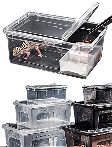 DREAMER.U Portable Reptile Terrarium Habitat Reptile Hatching Container for tarantulas, geckos, crickets, snails, hermit crabs, frogs, lizards, baby tortoise and snakes (Large, White) by DREAMER.U