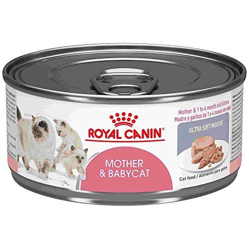 Rcfhn Babycat Loaf 24/5.8oz